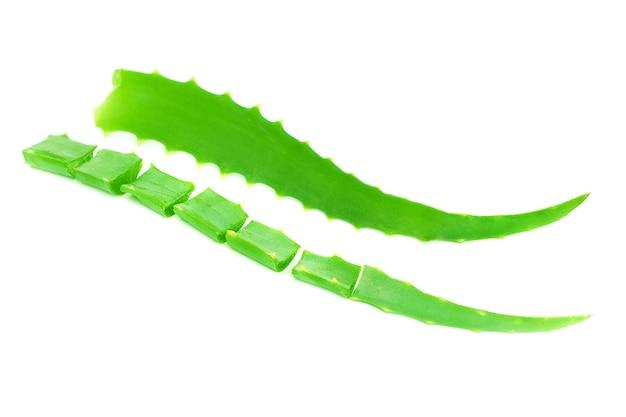 Folha verde de aloe vera isolada no branco