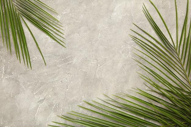 Folha verde de palmeira em fundo cinza de concreto, vista superior