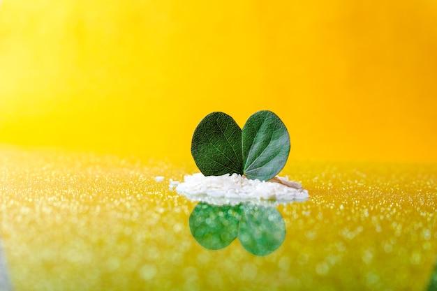 Folha verde e arroz em uma superfície de vidro