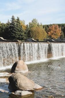 Folhagem colorida de outono com fonte pitoresca no parque de outono