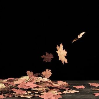 Folhagem de outono voando na superfície preta