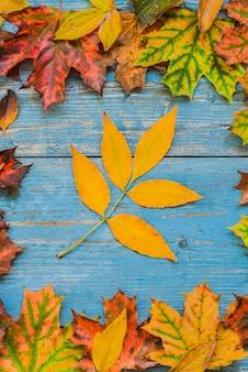 Folhas amarelas do outono em de madeira azul velho.