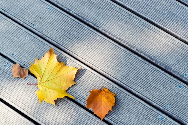 Folhas amarelas e marrons no fundo de madeira