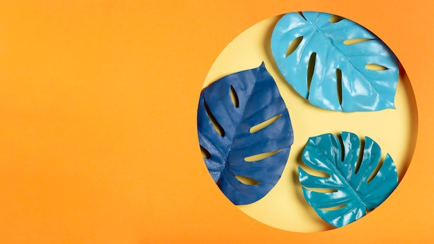Folhas azuis no quadro com espaço de cópia