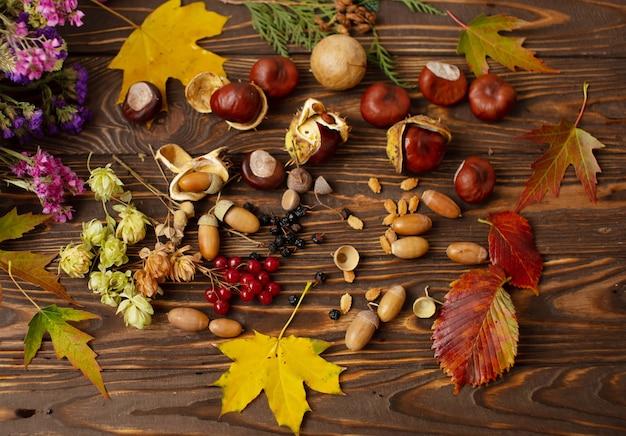 Folhas caídas e frutos secos na velha mesa de madeira, vista superior