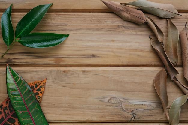 Folhas coloridas colocadas em uma cena de madeira marrom.