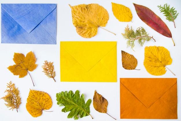 Folhas coloridas de outono e envelope