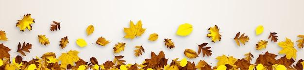 Folhas coloridas e brilhantes isoladas em um fundo branco em uma moldura