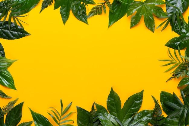 Folhas da planta verde no fundo amarelo. estilo vintage retrô.