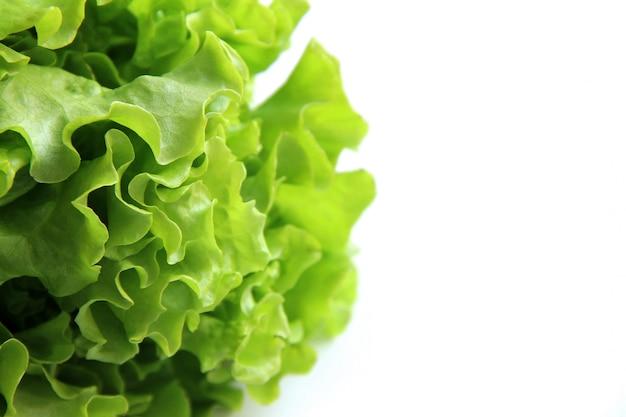 Folhas de alface apetitosa em branco