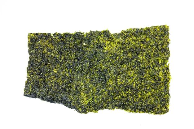 Folhas de algas marinhas em fundo branco.