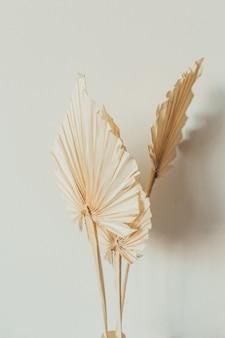 Folhas de artesanato em leque bronze na superfície branca