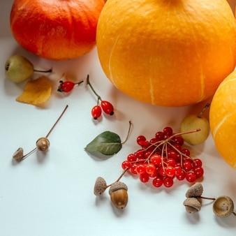Folhas de bolotas, rosas, bagas silvestres, peras silvestres e abóboras, composição de outono