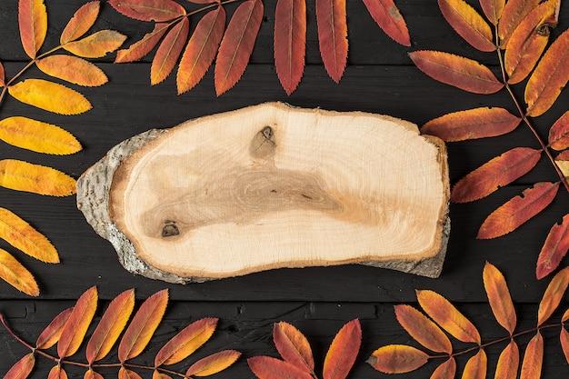 Folhas de bordo colorido queda e placa de madeira