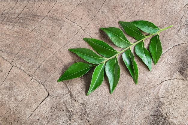 Folhas de caril frescas em fundo de madeira