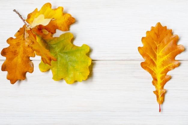 Folhas de carvalho amareladas em uma mesa de madeira branca clara.