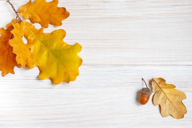Folhas de carvalho amarelado e bolota em uma mesa de madeira branca clara.