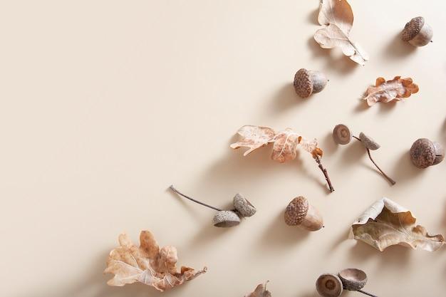 Folhas de carvalho caídas, bolotas e gorros de bolota em um fundo bege. padrão monocromático de outono com espaço de cópia
