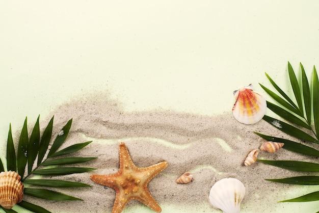 Folhas de cópia-espaço e mariscos