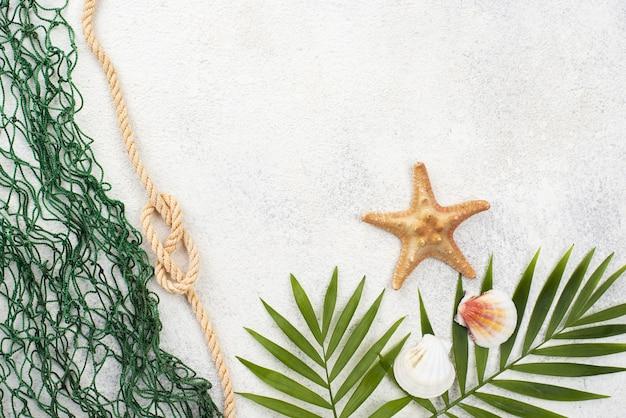 Folhas de cópia-espaço e rede de peixes
