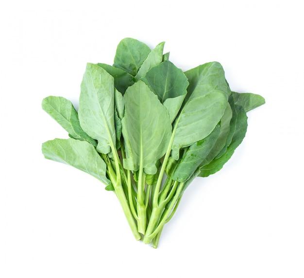 Folhas de couve chinesa vegetal isoladas