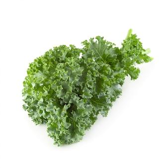 Folhas de couve fresca orgânica verde isoladas