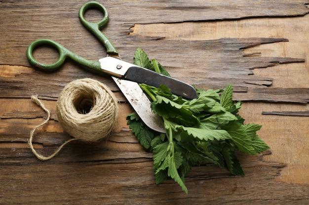 Folhas de erva-cidreira com corda e tesoura na superfície de madeira
