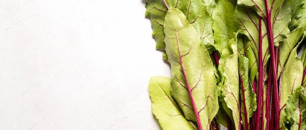 Folhas de espaço de cópia de acelga fresca