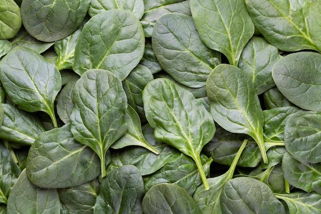 Folhas de espinafre verde fresco fundo close-up.