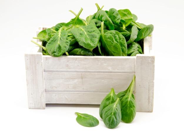 Folhas de espinafre verde fresco