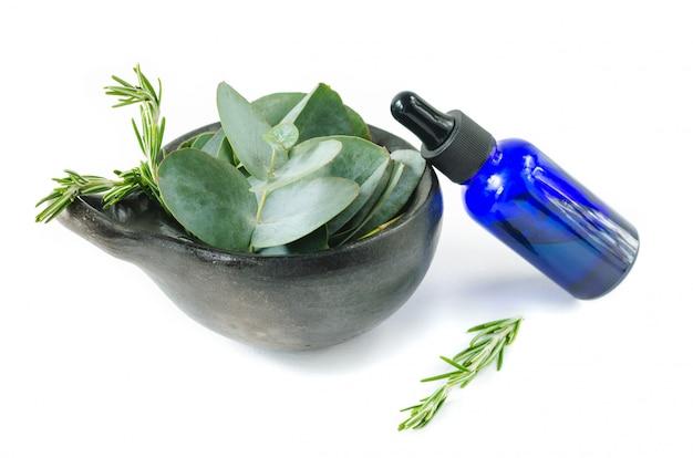Folhas de eucalipto e alecrim do conceito essencial de óleo essencial.