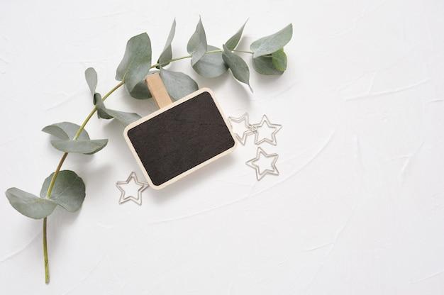 Folhas de eucalipto e estrelas de clipe de papel com quadro-negro