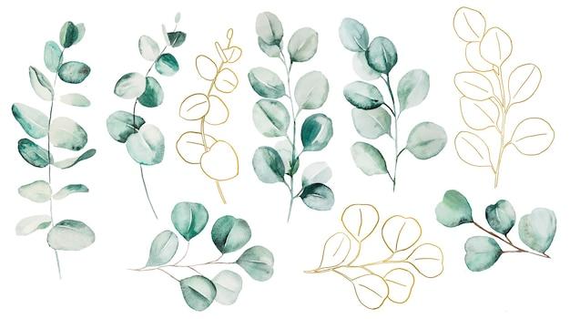 Folhas de eucalipto em aquarela definir ilustração. elementos para artigos de papelaria, convites, cartões comemorativos, logotipos, padrões, adesivos