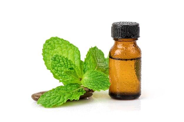 Folhas de hortelã de cozinha ou hortelã verde e extraídas em frasco isolado no fundo branco.