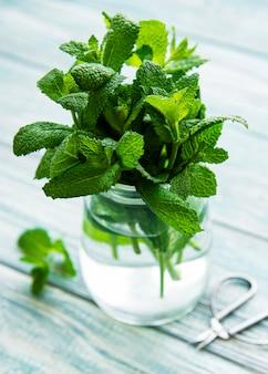Folhas de hortelã fresca em uma pequena jarra de vidro