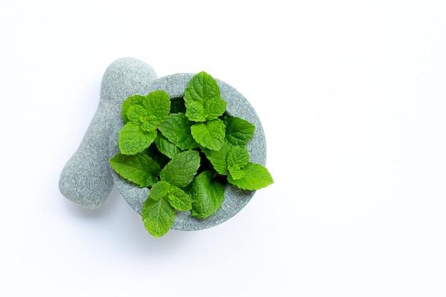 Folhas de hortelã no almofariz e no pilão de pedra no fundo branco.