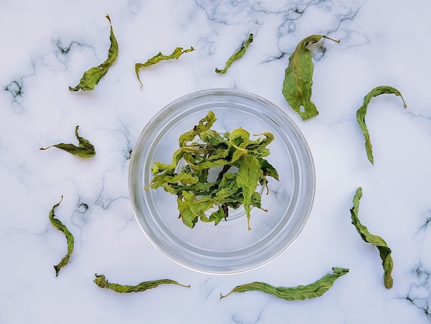 Folhas de hortelã verdes secas em um fundo branco em uma xícara de chá refrescante e tonificante Foto Premium