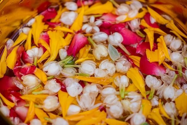 Folhas de jasmim rosa, tigela de água dourada, colocada em folhas de bananeira verde