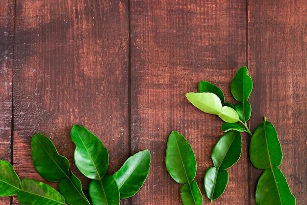 Folhas de limão kaffir verde fresco na mesa de madeira de fundo, ingrediente para a comida da ásia