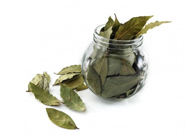 Folhas de louro secas para uso na culinária e na medicina. folha de louro como um medicamento popular com propriedades benéficas. frasco de vidro e folha de louro