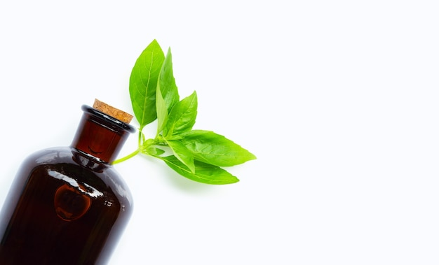 Folhas de manjericão com frasco de óleo essencial em branco isolado.
