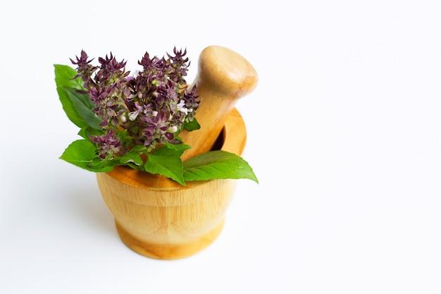 Folhas de manjericão doce com flor em pilão de madeira em branco