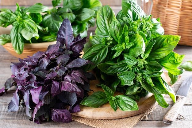 Folhas de manjericão fresco em uma placa de corte em uma mesa de madeira. manjericão verde e roxo. conceito de alimentação saudável.