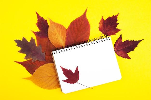 Folhas de maple e carvalho multicoloridas com caderno em branco, plana leigos. conjunto de outono colorido