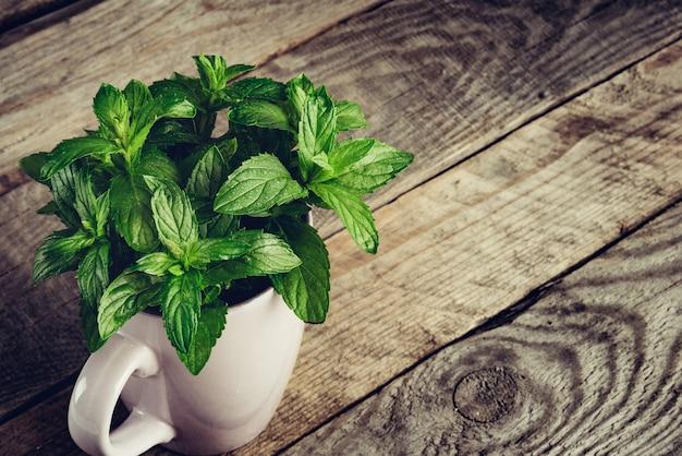 Folhas de menta. hortelã-pimenta de hortelã com gotas de água na mesa de madeira.