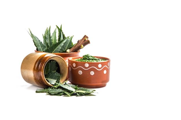 Folhas de neem medicinal com pasta e galhos em fundo branco