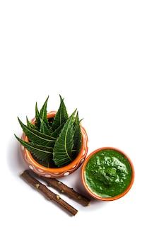 Folhas de neem medicinal com pasta e galhos na superfície branca