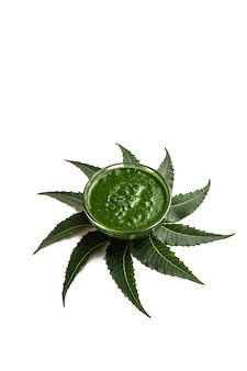 Folhas de neem medicinal com pasta em uma tigela sobre fundo branco.
