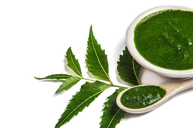 Folhas de nim medicinal com pasta de nim em colher e prato (azadirachta indica)