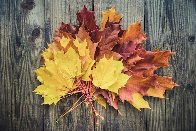 Folhas de outono amarelas na mesa de madeira